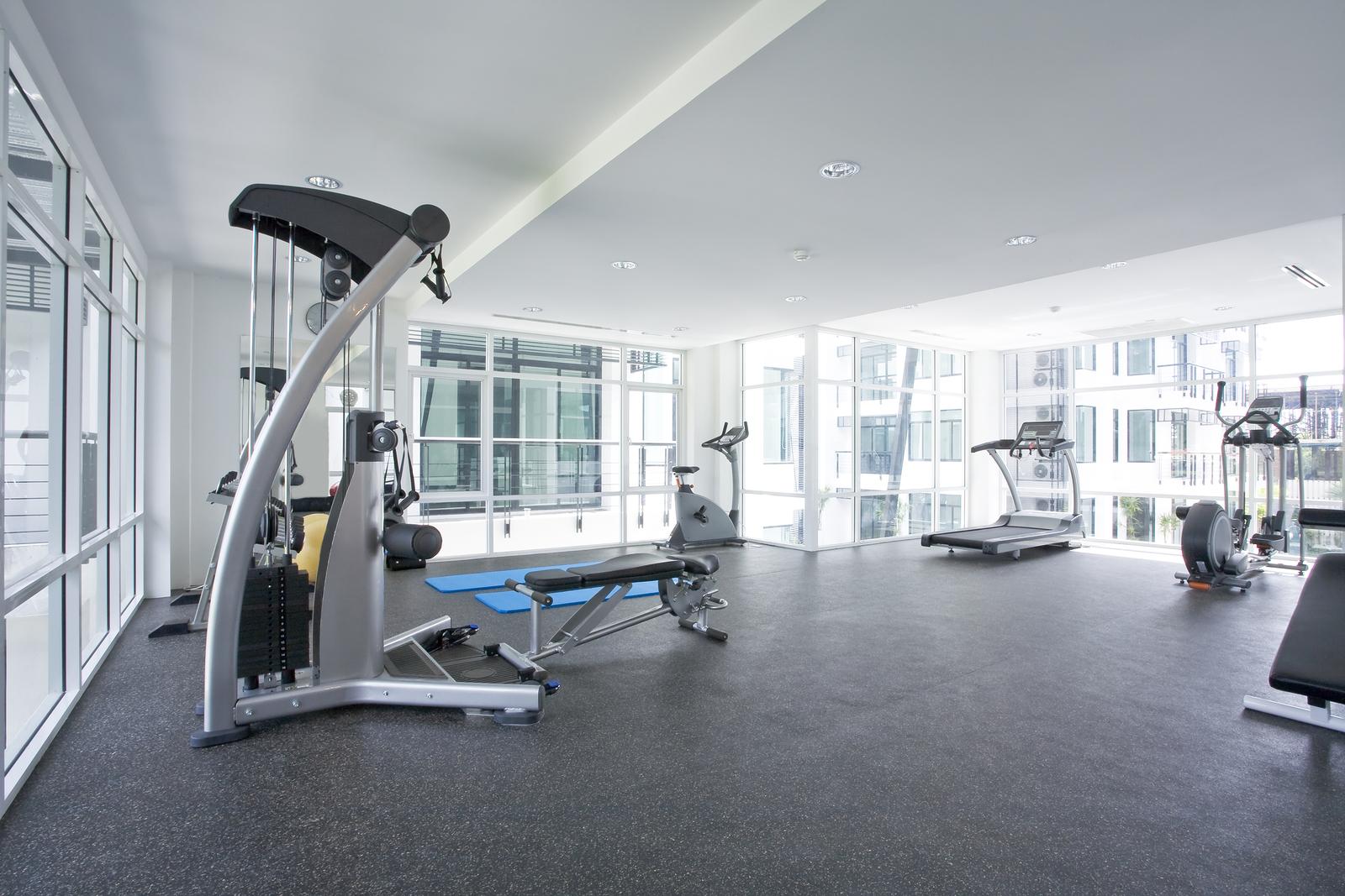 Living Room Gym Equipment